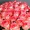 Букет из 51 розы Джумилия - Фото 5