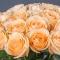 Букет из 51 розы Пич Аваланч - Фото 3
