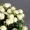 Роза Сноу Ворлд в вазе - Фото 4