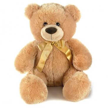 Ведмідь медовий