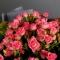 Букет из 15 роз спрей Грация  - Фото 4