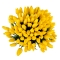 Букет из 101 желтого тюльпана - Фото 4