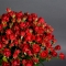 Букет из 19 роз Рэд Ванесса - Фото 4