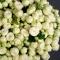 Букет из 51 розы спрей Сноу Ворлд - Фото 3