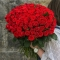 Букет из 101 розы Эль Торо  - Фото 1
