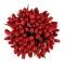 Букет из 101 красного тюльпана - Фото 2