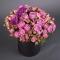 Композиция с розами Мисти Бабблз - Фото 3