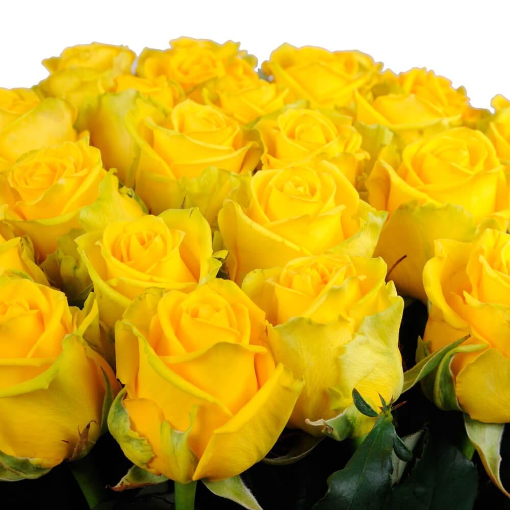 дети это красивые букеты желтых роз фото этом примере