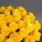Букет из 51 розы Пенни Лейн - Фото 3
