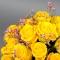 Композиция с розой Пенни Лэйн - Фото 5