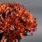 Букет хризантем Осень - Фото 3