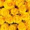 Букет из 141 розы Пенни Лейн  - Фото 4