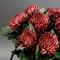 Букет бордовых хризантем - Фото 3