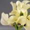 Букет белых калл - Фото 3