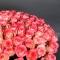 Букет из 101 розы Джумилия - Фото 4