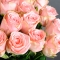 Букет 25 роз Хани Мун - Фото 3