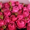 Букет из 9 роз Рич Бабблз - Фото 4