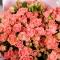 Букет из 25 роз спрей Пинк Ванесса  - Фото 3