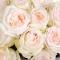 Букет 29 роз Уайт Охара - Фото 6