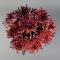 Букет красно-фиолетовых хризантем - Фото 3