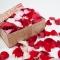 Лепестки роз микс - Фото 1