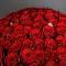 Букет из 101 розы Маричка  - Фото 3